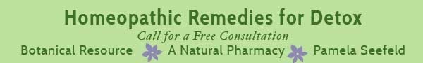 homeopathics-detox-banner